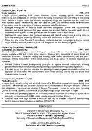 Resume Template It Download Wharton Resume Template Haadyaooverbayresort Com