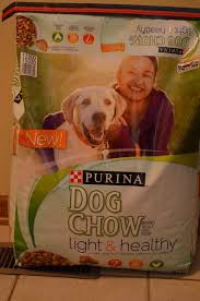 purina light and healthy purina dog chow light healthy my doggie s diet plan giveaway