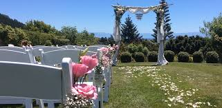 wedding arches nz weddings more thackwood cottage
