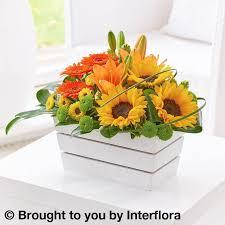sunflower arrangements germini and sunflower arrangement alternative arrangements