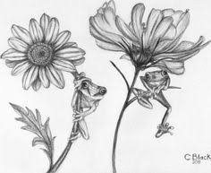 black and white sketches of flowers any medium even just pencil