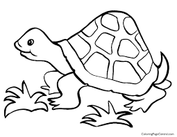 100 pond coloring page oceana coloring coloring books and