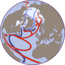 Ocean Currents Map Factors Affecting Arctic Weather And Climate National Snow And