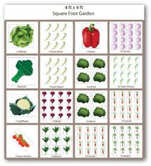 Raised Vegetable Garden Layout Raised Bed Vegetable Garden Layout Ideas