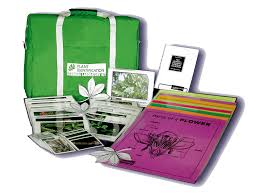 plant identification learning lab kit ohio 4 h youth development