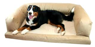 bedroom stunning raised dog beds for large dogs extra orthopedic