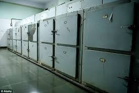 nyc cremation woman left rotting in new york city morgue freezer for a year