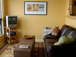 Best Colour Combination For Home Interior Living Room Color Themes Home Decor Combinations Interior Paint