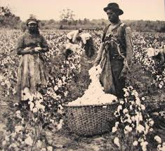 slavery freedom site