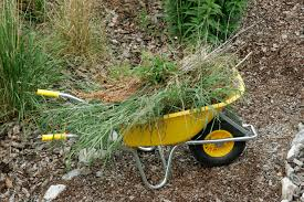 5 important ways to clean up your yard for spring western lehigh