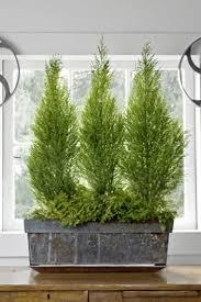 Indoor Window Planter Best 25 Metal Window Boxes Ideas On Pinterest Us General Tool