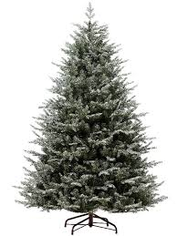 1 5m 5ft frosted oxford spruce tree it s the most