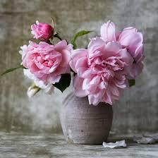 fresh flowers fresh flowers in a vase briski to go