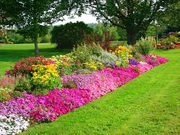 beautiful flower garden hd images www sieuthigoi com