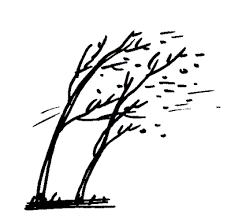 tree clipart wind blowing pencil and in color tree clipart wind