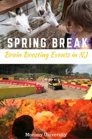 brain boosting spring break events in nj mommy university