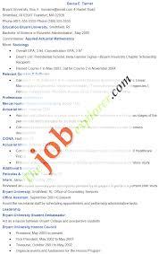 entry level it resume entry sample resume cover letter