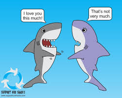 i love you this much shark cartoons by support our sharks