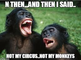 Monkey Face Meme - 21 best just us monkeys or not images on pinterest monkey