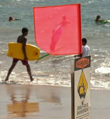 Beach Red Flag Red Flag Warns Swimmers News Sports Jobs Maui News