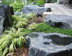 outdoors asian style rock garden with green plants near patio