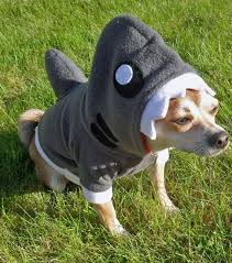 Shark Costume Halloween 23 Shark Pups U0026 Friends Images Shark Week