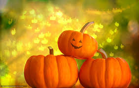 happy halloween with no background pumpkin without background images reverse search