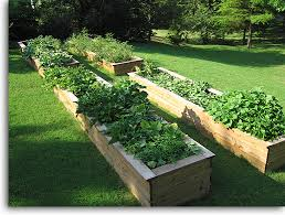 gorgeous wood for raised bed vegetable garden diy stacked herb