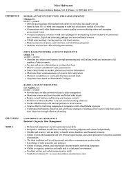 account executive resume radio account executive resume sles velvet