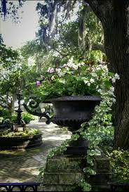 Veranda De Reve 971 Best Jardins De Rêve Images On Pinterest Gardens