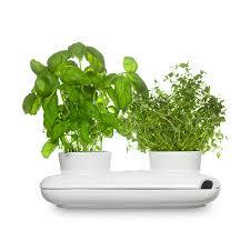 kräutertopf küche kräutertopf herbs and spices duo 27 x 13 cm weiß sagaform