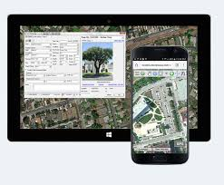 tree inventory software gis asset management cloud based
