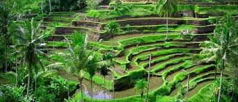 where is the best place to vacation in bali vacations
