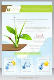 8 best other house plants images on pinterest indoor plants