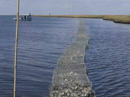 The Reef Biloxi Best Seafood Restaurant Come Shell Or High Water Oyster Shell Recycling Along Louisiana U0027s