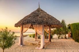 best of tanzania safari u0026 zanzibar beach zicasso