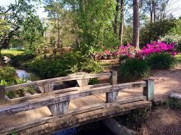 Botanical Gardens Houston Japanese Garden Picture Of Hermann Park Houston Tripadvisor