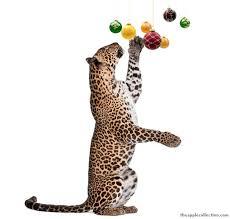 leopard ornaments jemez mountain schools