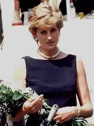 princess diana murder in paris the unredacted