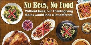 without bees our thanksgiving dinners would look a lot different