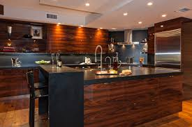 rosewood kitchen cabinets modern rosewood kitchn contemporary kitchen miami by beres