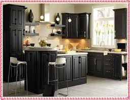 Black Kitchen Cabinets by Black Kitchen Cabinets Samples Kitchen Cabinet Color Ideas New