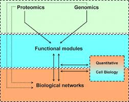 systems biology in the cell nucleus journal of cell science