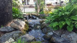ponds and water gardens fishman services llc