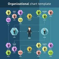 hierarchical org chart template 2 management 25 typical