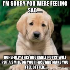 Feeling Sad Meme - i m sorry you were feeling sad hopefully this adorable puppy