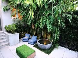 creative small courtyard garden design ideas small space courtyard garden design ideas