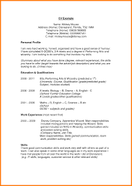 profile exles for resumes resume exle awesome exle of a resume profile exles