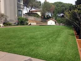 Synthetic Grass Backyard Fake Grass Rincon Georgia Putting Green Turf Backyard Design