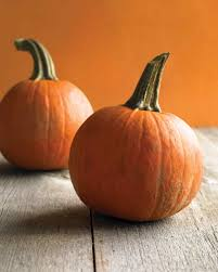 small pumpkins pumpkin recipes martha stewart